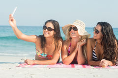 Group of friends in swimsuits taking a selfie Royalty Free Stock Image