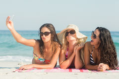 Group of friends in swimsuits taking a selfie Stock Photography