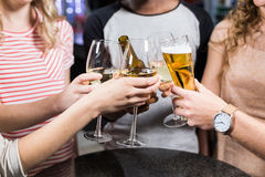 Group of friends toasting with beer and wine Royalty Free Stock Photos