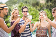 Group of friends toasting champagne flute. Group of happy friends toasting champagne flute outdoors royalty free stock photo