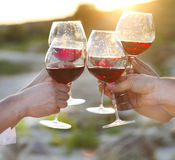Group of friends toasting red wine at a relax party celebration Stock Photography