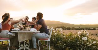 Group of friends toasting wine at dinner party royalty free stock images