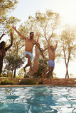 Group Of Friends On Vacation Jumping Into Outdoor Pool stock photo