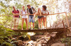 Group Of Friends On Walk Crossing Wooden Bridge In Forest Stock Photo