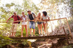 Group Of Friends On Walk Crossing Wooden Bridge In Forest Stock Photography
