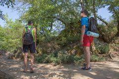 Group of friends walking with backpacks in forest. backpack hiking in the woods. Adventure, travel, tourism, active rest, hike and Stock Photo