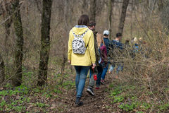Group of friends walking with backpacks in spring forest from back. Backpackers hiking in the woods. Adventure, travel Stock Images