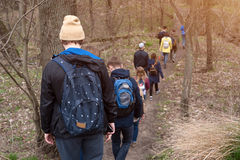 Group of friends walking with backpacks in spring forest from back. Backpackers hiking in the woods. Adventure, travel Royalty Free Stock Images