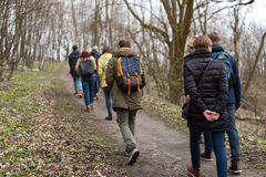 Group of friends walking with backpacks in spring forest from back. Backpackers hiking in the woods. Adventure, travel Royalty Free Stock Image