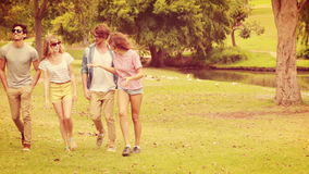 Group of friends walking in the park stock video footage
