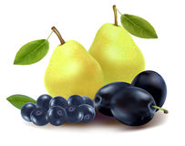 Group of fruit. Royalty Free Stock Image