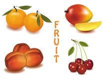 A group of fruit. stock illustration