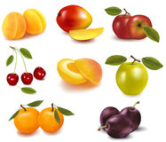 Group of fruit. Stock Photos