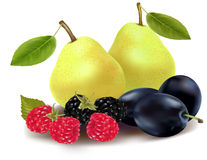 Group of fruit and berries. Royalty Free Stock Photography
