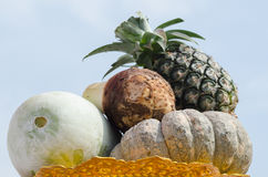 Group Fruits. Royalty Free Stock Photos