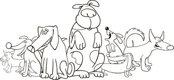 Group of funny dogs for coloring Royalty Free Stock Images