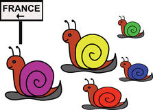 Group of funny snails (joke). Group of funny snails moving to the France (joke Royalty Free Stock Image