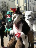 A Group of Furry Animals in Savannah, Georgia Celebrates Martin Luther King Jr. with 39th Annual Parade. The famed Martin Luther King Jr. Observance Day Royalty Free Stock Photography