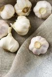 Group of garlic bulbs on canvas, top view. Group of garlic bulbs on canvas with white wood background, top view Stock Photos