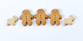 Gingerbread man and dog Royalty Free Stock Images
