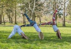 Group of girl doing yoga Royalty Free Stock Photo