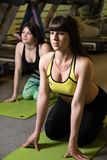 A group of girls in the gym on the mat. Royalty Free Stock Photography