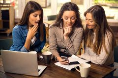 Time for some gossip. Group of girls making a pause on the studies for some gossip royalty free stock photography