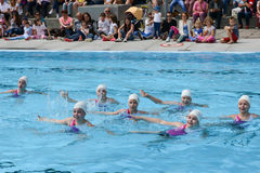 Group of girls in a pool practicing synchronized swimming Stock Photos