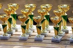 Group of golden trophies championship awards in row. Golden colored trophies waiting for winners at an equestrian event summertime stock photography
