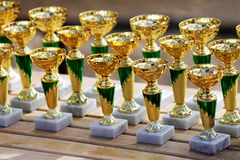 Group of golden trophies championship awards in row. Golden colored trophies waiting for winners at an equestrian event summertime royalty free stock image