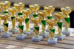 Group of golden trophies championship awards in row. Golden colored trophies waiting for winners at an equestrian event summertime stock images