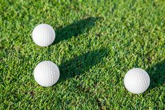Group of Golf Ball on Grass stock image