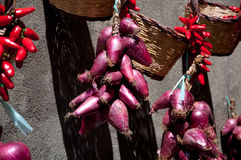 Group of good red onions of Tropea and chilli Royalty Free Stock Photography