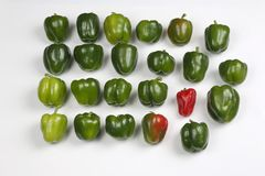 Group of green bell pepper on white background Royalty Free Stock Image
