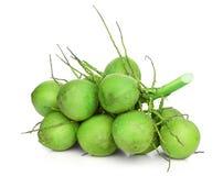 Coconut fruit isolate Stock Image