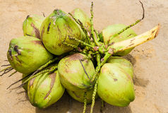 Group of green coconuts Stock Photos