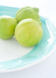 Group of green lemons on colored background Royalty Free Stock Photos