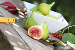 A group of green and ripe figs Royalty Free Stock Images
