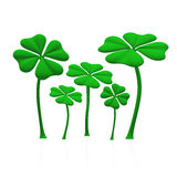 A group of green shamrocks 02. A group of green shamrocks on white background vector illustration