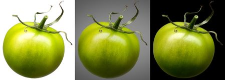 Group of green tomatoes isolated on different Royalty Free Stock Photography