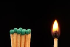 Group of green wooden matches standing with burning match. Isolated on black background Royalty Free Stock Photography