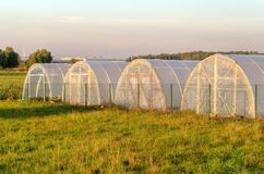 A group of greenhouses. Stock Photo