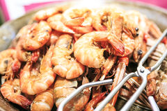 Group of grilled  red prawns Royalty Free Stock Photography