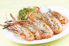 Group of grilled shrimps Stock Photos