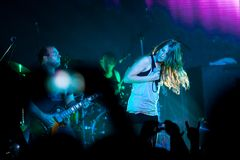 Group Guano Apes Royalty Free Stock Images