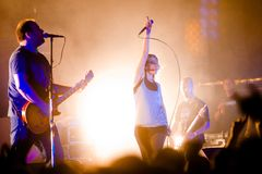 Group Guano Apes Royalty Free Stock Image