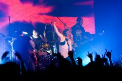 Group Guano Apes Royalty Free Stock Photos