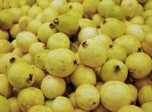 group guavas yellow Στοκ Εικόνα