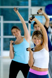 Group at the gym Royalty Free Stock Image