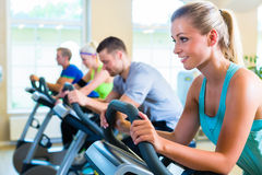 Group in gym spinning on sport bicycle Stock Images